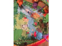 Fisher Price Rainforest Baby Bundle