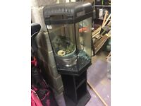 Aqeul 50 litre fish tank and all accessories