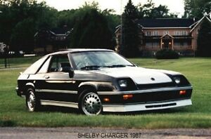 Looking for Shelby Daytona Chrysler conquest or Shelby charger