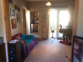 Large single room in shared house
