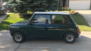 1979 Austin Mini 1000 (REDUCED TO SELL)