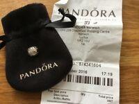 Brand New Pandora Bead