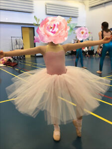 Dress up ballet costume with tutu