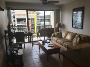 FOUR PADDLE ONE BEDROOM/STUDIO WAIKIKI