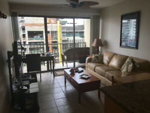 FALL SPECIAL FOUR PADDLE ONE BEDROOM/STUDIO WAIKIKI