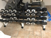 Technogym DumbBells - USED