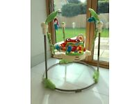 Jumperoo used but in good condition