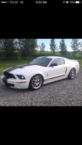 2008 MUSTANG GT CALIFORNIA SPECIAL 5 SPEED FULLY LOADED