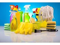 PROFESSIONAL CLEANING SERVICES £10 PER HOUR