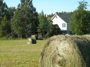 Cottage avec grand  domaine à la campagne, région de Matane.