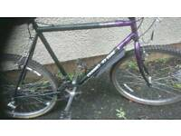 DIAMOND BACK, MENS MOUNTAIN BIKE, 20 INCH FRAME, 26 INCH WHEEL'S, 18 GEARS GOOD CONDITION