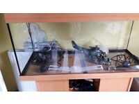 3ft fish tank with stand & all accesories great condition first to see will buy.. BARGAIN