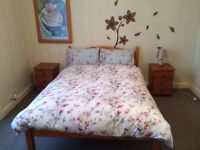 Lovely double room for rent Haymarket