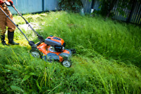 NORTH EDMONTON LAWN SERVICE/ MOWING