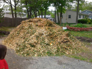 Free Natural Mulch/ Woodchips Delivery