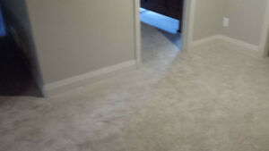Carpet removed from basement