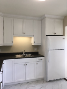 2 bed rooms apartment near Champlain Mall