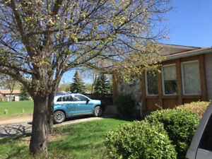 Available Today! COMPLETELY RENOVATED, 2 Bedroom Basement Suite!