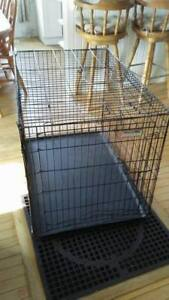 LARGE Collapsible Dog Kennel