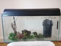 3 ft Aquarium and accessories (filter etc) - job lot....not splitting. Was all working 2 years ago.