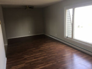 GIANT 1 Bedroom apartment $725 + Utilities