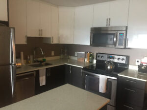 Downtown Condo style apartment SEPT 1st