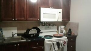Bachelor pad with full kitchen for rent in Timberlea