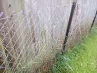 Free wire mesh fencing for collection