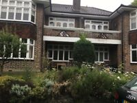 Very Nice Double Room in Putney Hill Green Man