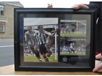 newcastle utd owen shearer newcastle football club print framed