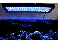 Evergrow it2080 v2 pro reef wifi aquarium led lights