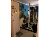 Commercial ex gym smith machine with 6 weight plate storage pins