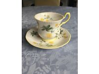 Queens fine bone china Rosina tea cup set