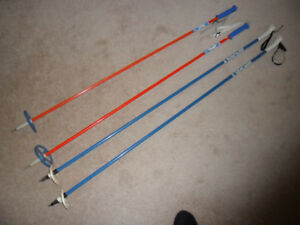 2 Pairs Cross-Country Ski Poles