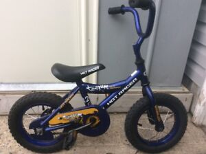 "12"" Blue Kids Bike"
