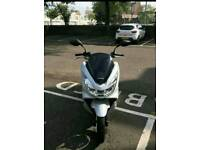 Honda pcx not vision or sh ps