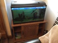 Fish with Tank, Unit & Accessories for sale