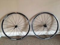 Zipp C30 clincher road wheel set