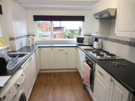 Lovely large double room to rent in Blackboy Road, Central Exeter