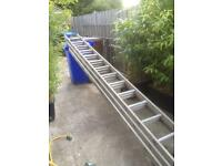 Ladder- Professional Triple Extension 40', Aluminium