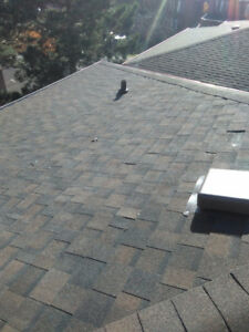 Professional Roofing - free estimate