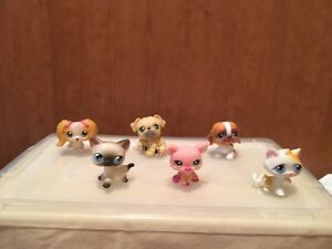 Lot pet shop chat chien cochon petshop lps littlest