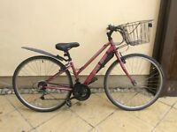 Ladies cx10 bike