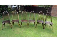 Ercol Quaker Chairs, set of 6 model 365