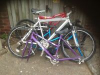 Job Lot of Four Bikes (Minerva ,Raleigh