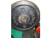 2x15kg metal weight plates