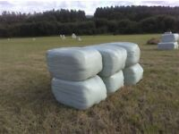 Wrapped Small Bale Hay