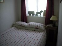 Double room with Shared bathroom. Available now