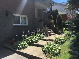 Immediate Occupancy-Montreal-West Island-Kirkland-House For Rent