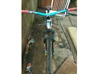 Dmr downhill mountain bike